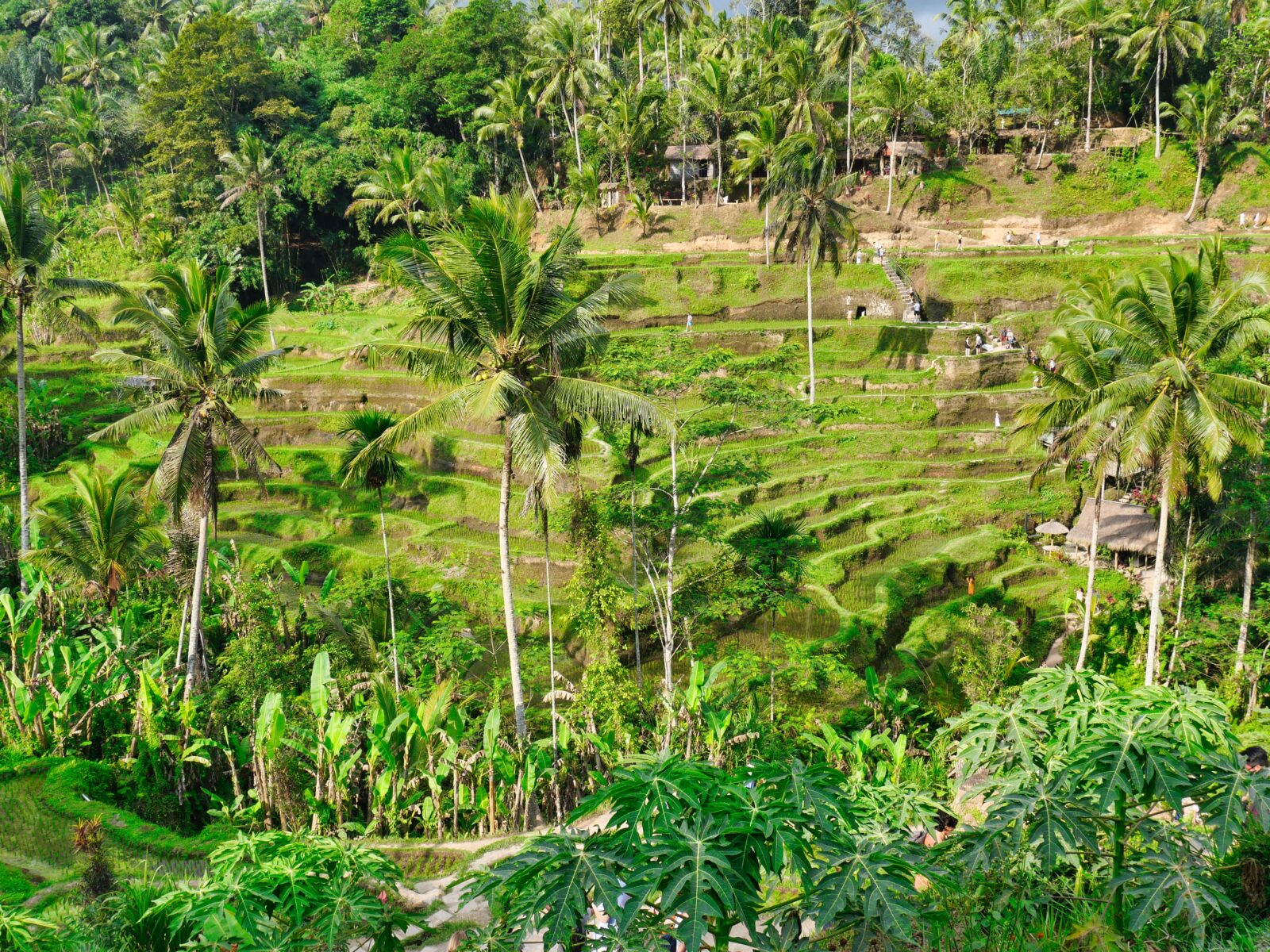 Bali Archives Best Vacation Spots Around The World Things